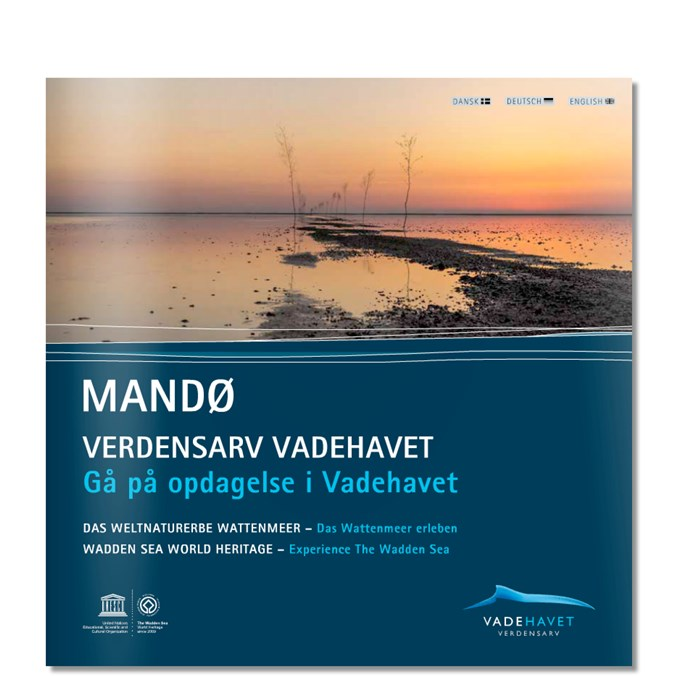 2015 Nationalpark Vadehavet glocal Mandø.jpg